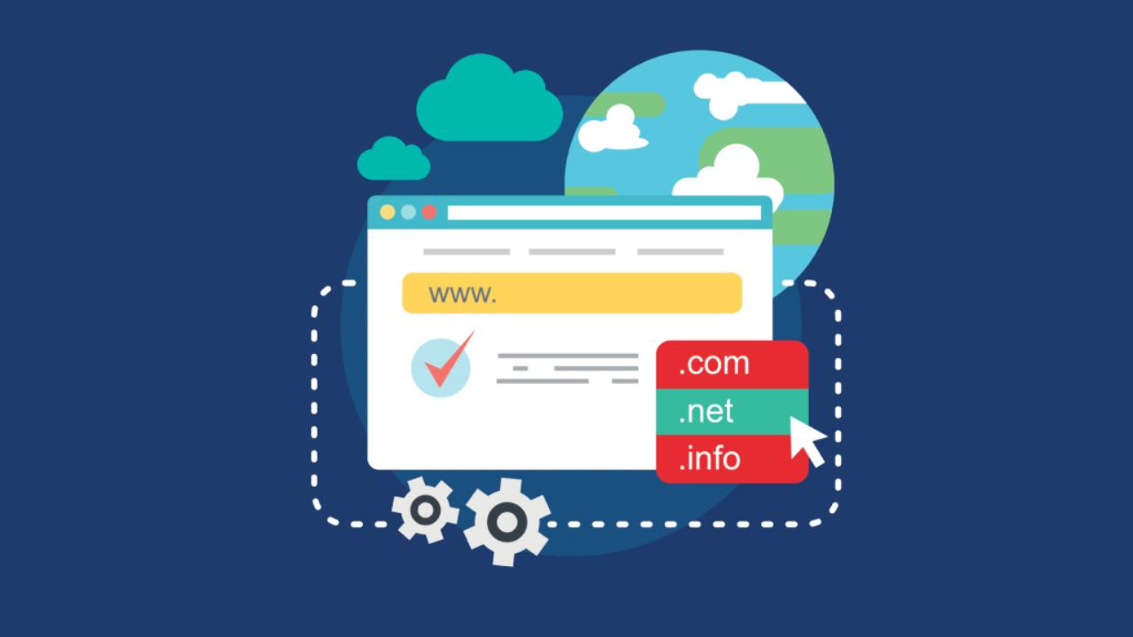данные по регистрации домена
